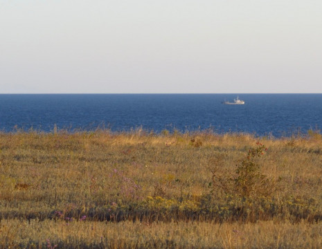 Sale of a plot with access to the Dnieper river in Tripoli. Kiev region