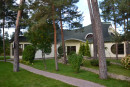 House 720m with perennial pines in Kozin. Kiev region