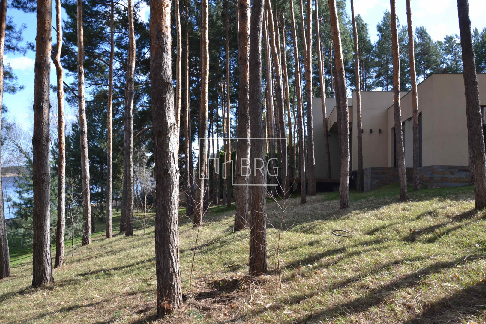 House 850m in a pine forest with access to the Stunna and Dnepr rivers. Kiev region